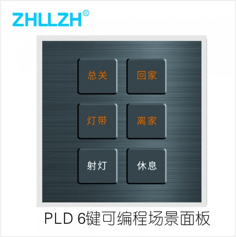 ZHL61306